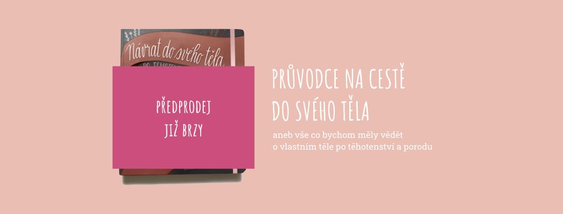 Iva Fiš - KNIHA - víc info